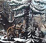 American-winter-sports